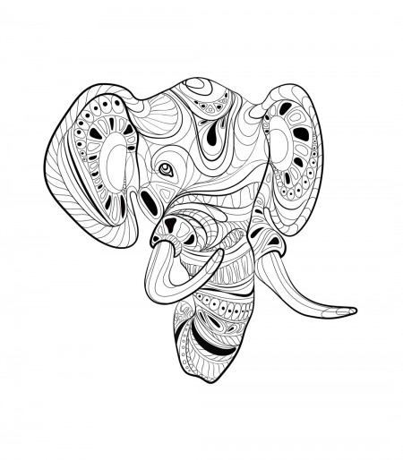 Fancy Elephant